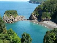 OCT. & NOV. DEVON & CORNWALL BREAKS - DOGS WELCOME - BAR - POOL - BEACHES - PUBS - CHEAP BREAKS