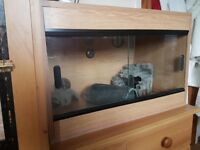 Wooden Oak Style Vivarium