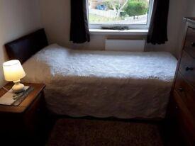 Hamworthy single Room
