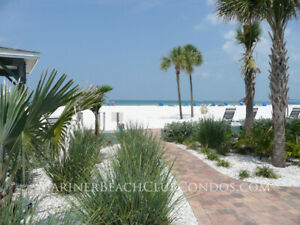 St Pete Beach Florida Condo  with Pool Beachfront Free Wifi