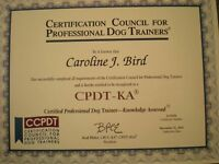 PROFFESIONAL HELP WITH BEHAVIOR AND TRAINING FOR DOGS