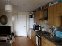 2 Bedroom flat to share, Perth Road