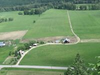 Active Cattle Ranch in Grand Forks BC