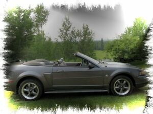 2004 Ford GT Convertible 40th Anniversary Edition