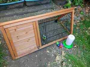 Guinea pig, rabbit or small animal cage w/ extras Kensington Park Burnside Area Preview