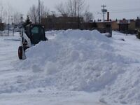 Snow removal - Push and Pile