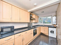 Magnificent 4 bed, 1 bath *NO LOUNGE* Maisonette Flat - Mile End, E3