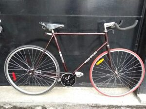 Velo Sport single speed grand