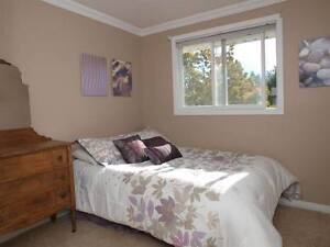 nice rooms rent for students from Jan 2017