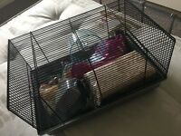 Hamster cage with all accessories and snacks included, barely used and clean - 20£
