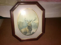 Stag Picture in Wooden Frame