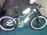 Brand new electric mountain bike