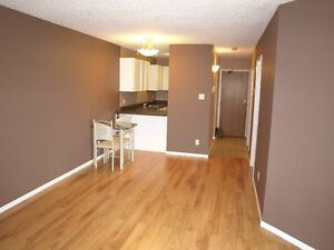 1 bedroom condo in downtown Regina