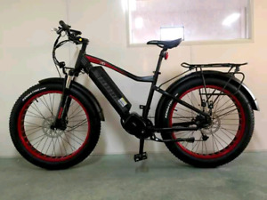 Build your own Ebike