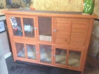 Rabbits and double story hutch