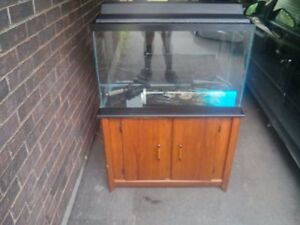 free fish tank stand when you buy the fish tank