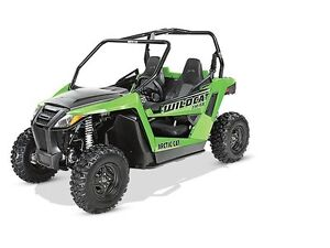 2015 Arctic Cat Wildcat™ Trail