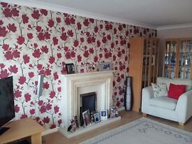 Painter & Decorator in Llanelli