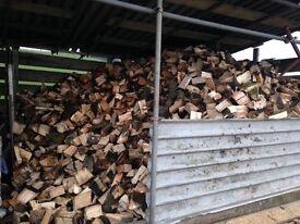 Hard wood logs seasoned ready to burn log burners