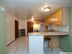 summer only: $400 for two bedrooms! all inclusive!
