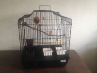 black bird cage with some accessories