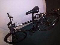 Challenge Crusade Bicycle