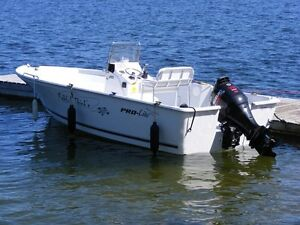 Centre Console, Great Family/Fishing boat. Kitchener / Waterloo Kitchener Area image 1