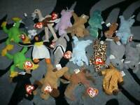 Ty teddys for sale
