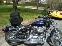 Sporster 1200xl custom