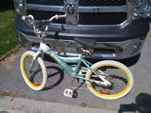 Vélo Sportek Honaay Bike