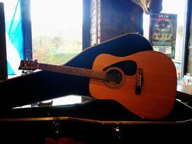 Yamaha F310 Acoustic Guitar & Case (decent condition - few bumps & bruises)