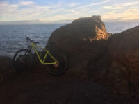 Specialized Rockhopper Expert, 29W, 19FR