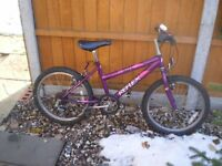 "girl bike 6 gears 20"" wheels"
