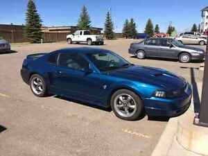 1999 mustang gt needs new motor or motor rebuild