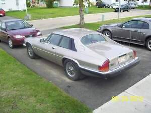Project or parts car