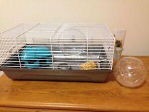 Cage à hamster