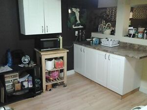 One Bedroom Bedroom Suite Near Whtye Ave Avail Nov 1