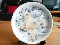 The Polar Bear Plate - Ursus Maritmus plate made by Poole Pottery