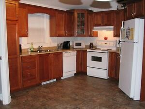 Beautiful 3 bedroom, 1 bath mini home in Amherst