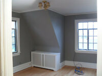 1ST CLASS PAINTER AND DECORATOR[30YRS EXP] GREAT RATES FROM £17ph QUALITY WORK GUARANTEED