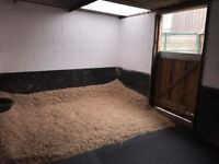 Equestrian facility/ competition yard to rent -7 stable,s 2 schools, BSJA show jumps, 15 acres