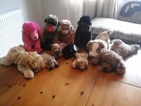 Mixed Selection TY soft toys