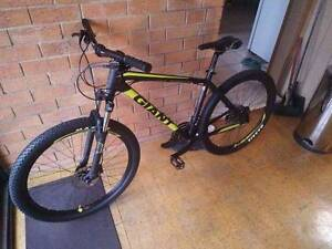 Giant Talon 3, good condition. Almost new! Maitland Maitland Area Preview