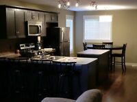 2 bedrooms and 1 bath (utilities/internet/cable included)