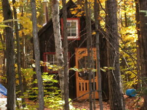 Ontario Wilderness and Cabin: Sportsman's Paradise!