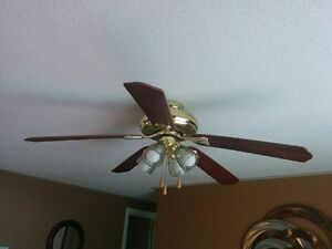 48 Inch Ceiling Fan with lights