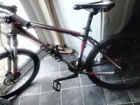 giant talon 3 mens mountain bike grey and red