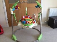 Fisher Price Rainforest Jumperoo Baby Bouncer