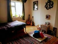 Beautiful double room to rent March/April