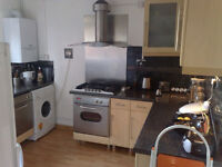 Very good size double bedroom in a friendly flat-share close to Elephant & Castle